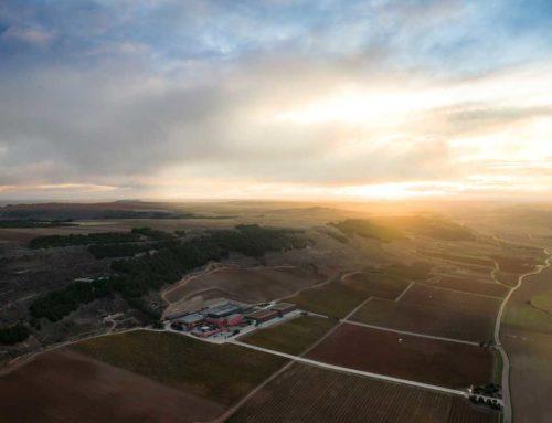 Pago de Carraovejas se incorpora a la  Fundación para la Cultura del Vino